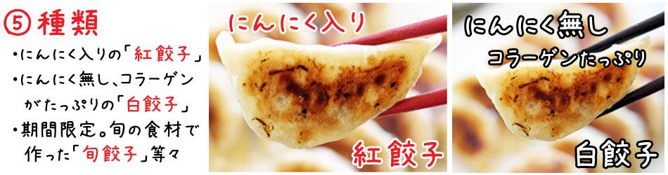 天津餃子 業務用5