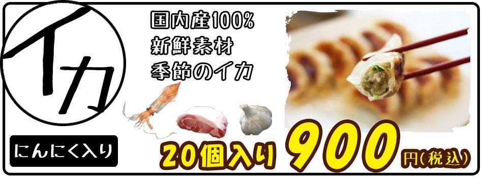 イカ餃子(いかぎょうざ)